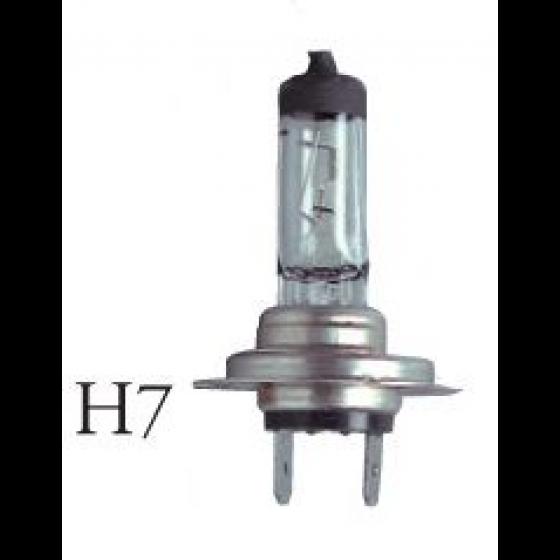 Lampe H7 12V 55W sous blister - 16858